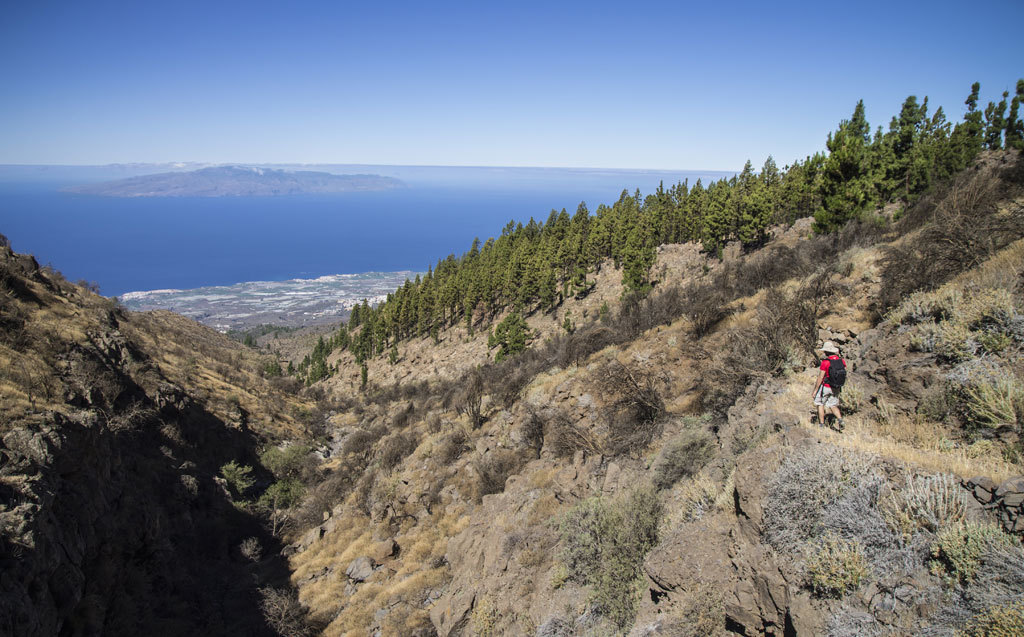 PR-TF 70 hiking trail Tenerife the improvement concludes